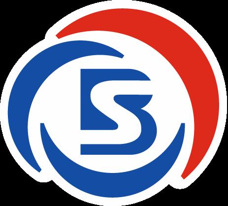 Best Sport Logo